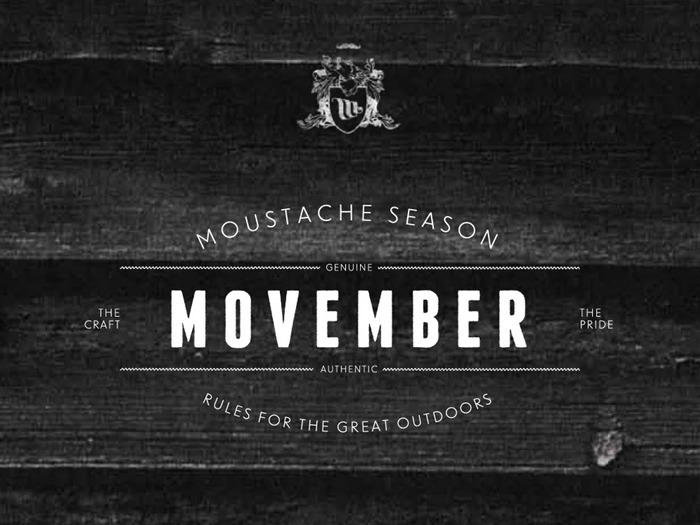 The Movember logo.