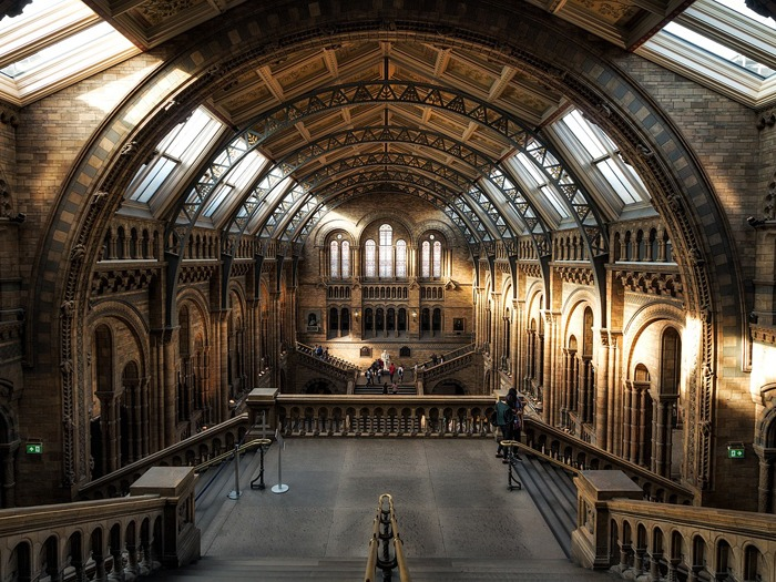The interior of the Natural History Museum.