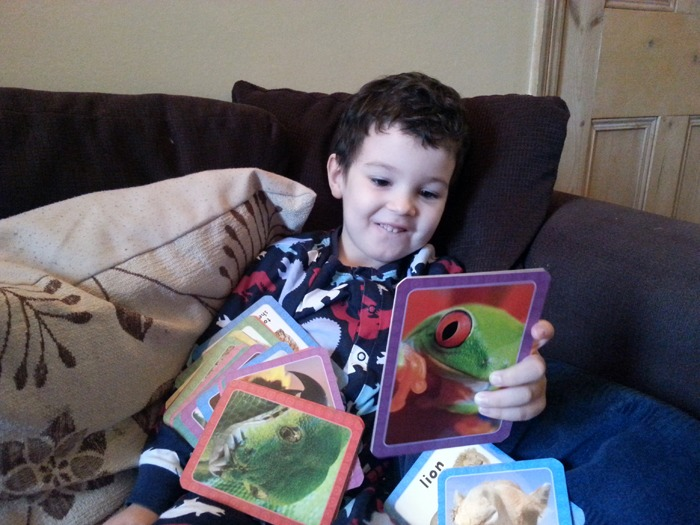 A happy boy playing with flashcards