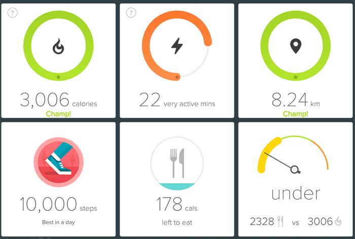 Six progress indicators illustrating distance covered and calories eaten.