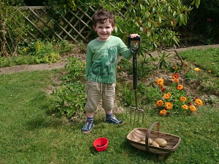 A small boy in the garden with some fruit and vegetables.