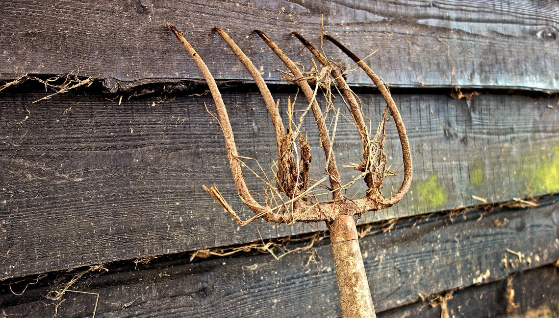 A rusty pitchfork leaning against a weathered shed.