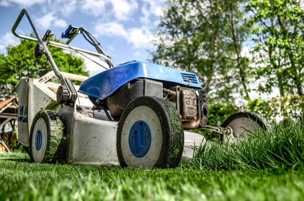 A lawnmower viewed from grass level.