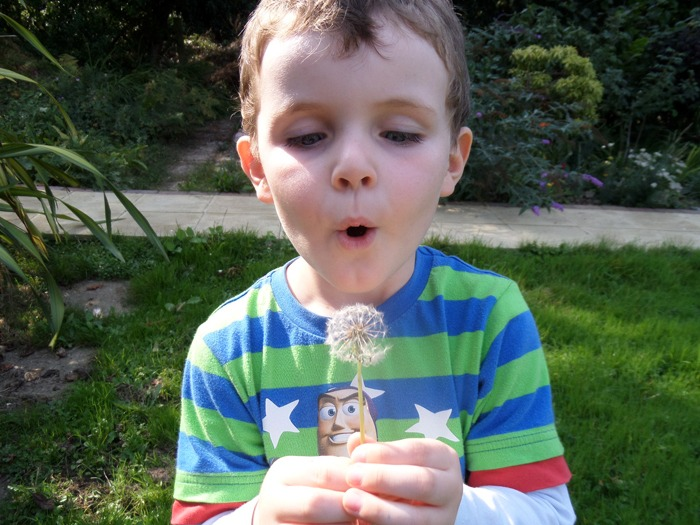 A young boy blowing a dandelion, trying to tell the time left until school starts. Thankfully, the wait is over now!